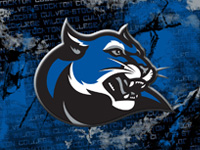 Wildcat logo Wallpaper